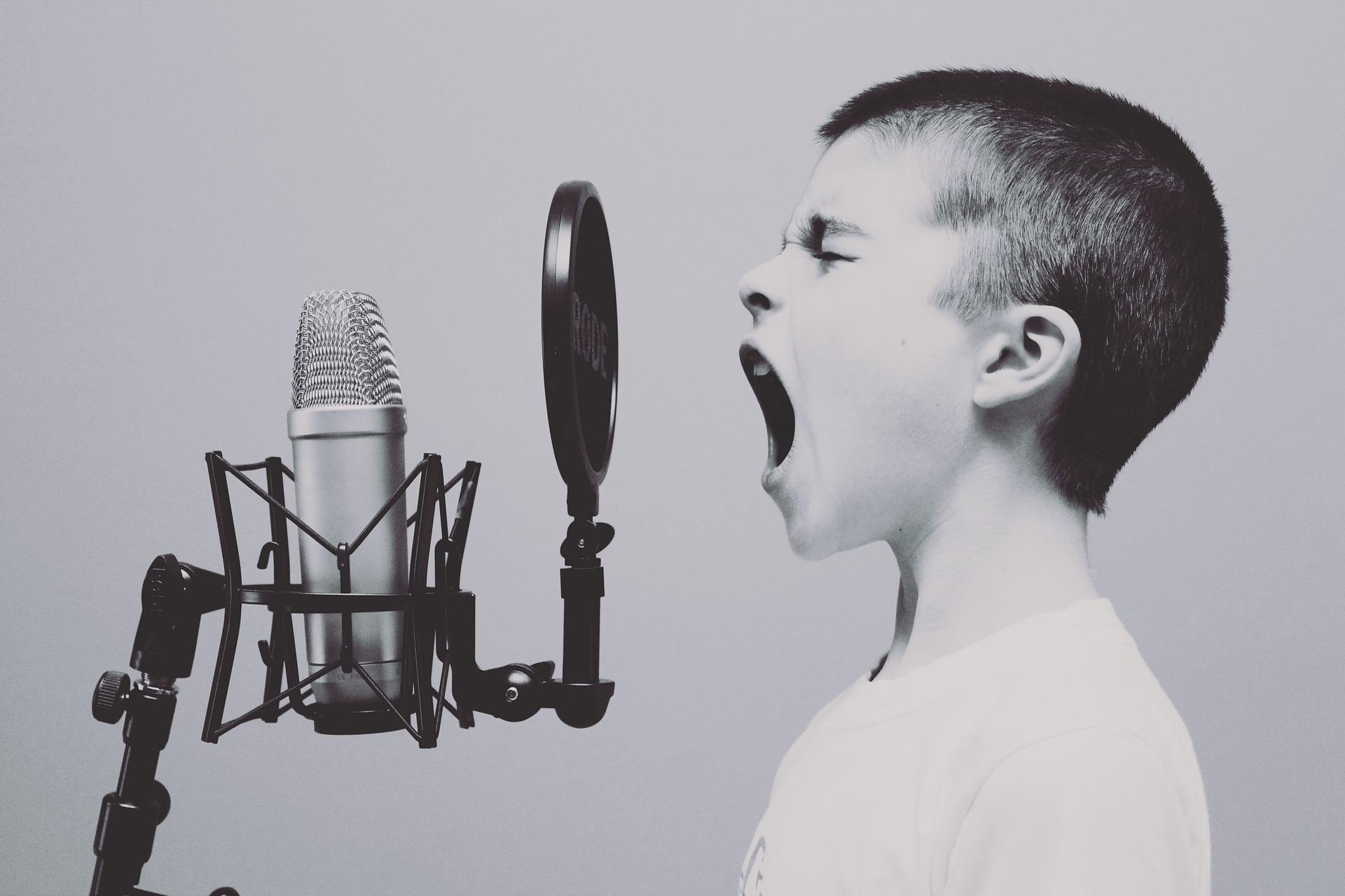 Auf Deutsch singen …Deutsch lernen